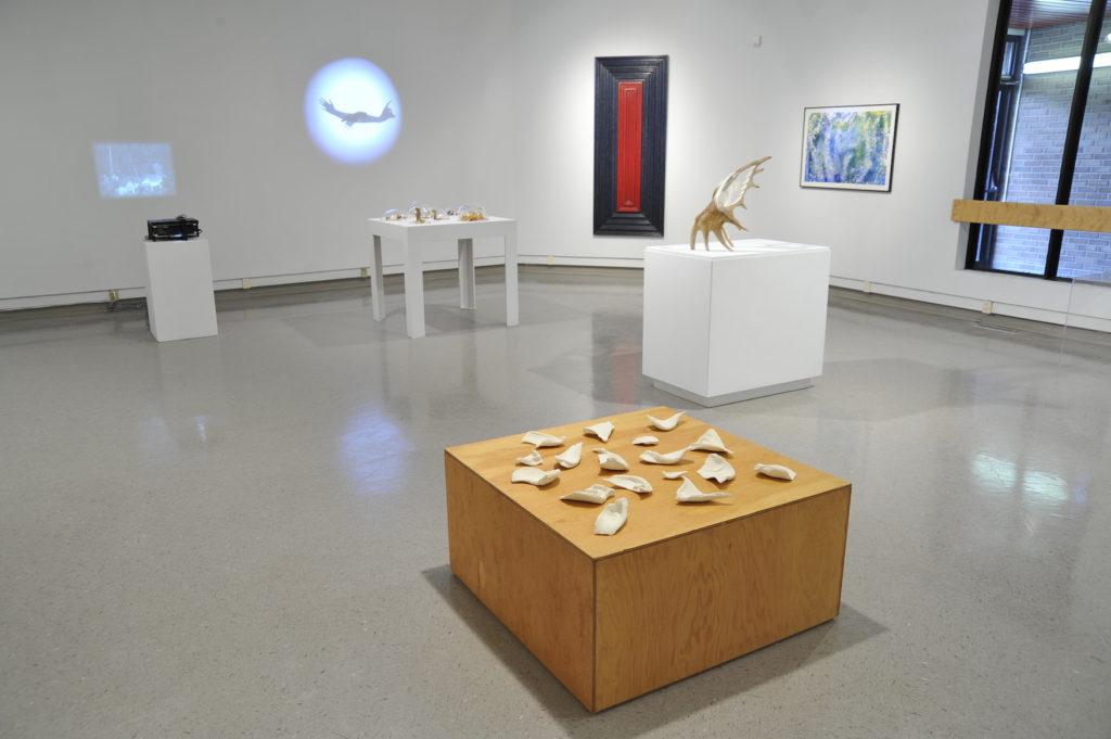 Mind the Gap installation shot, Dunlop Art Gallery, Regina, SK, 2009