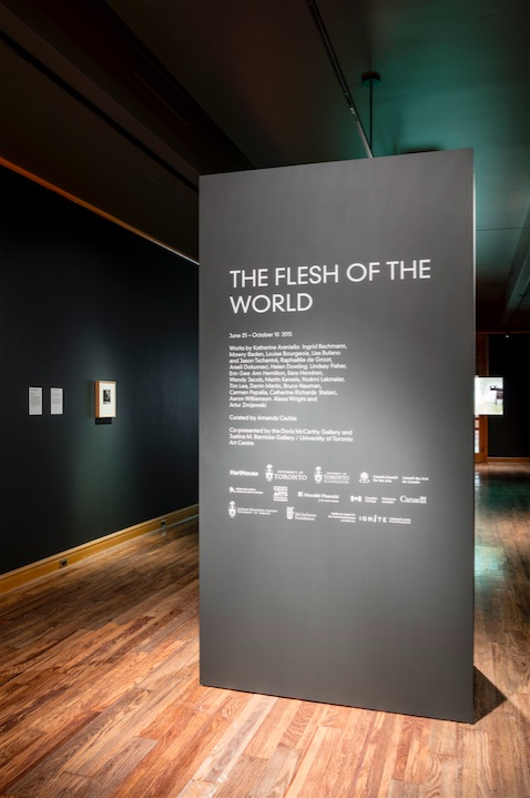 Flesh of the World installation shot, University of Toronto Art Centre, 2015