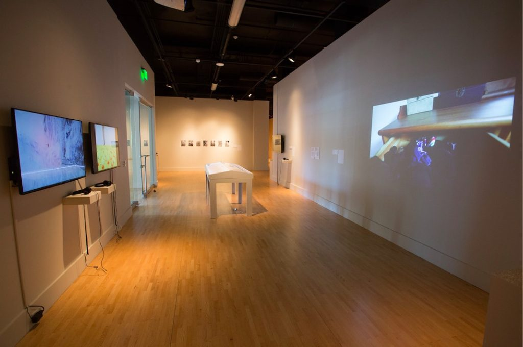 Art of the Lived Experiment installation shot, Kendall College of Art & Design, Ferris State University, Grand Rapids, MI, 2015