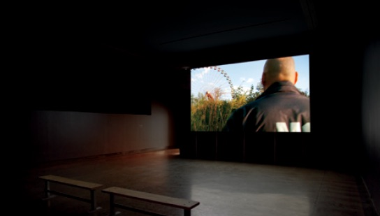 Lynne Marsh, Planterwald, 2010, High-definition video, 17:50, Video projection with 4 channel sound, raised wood screen construction