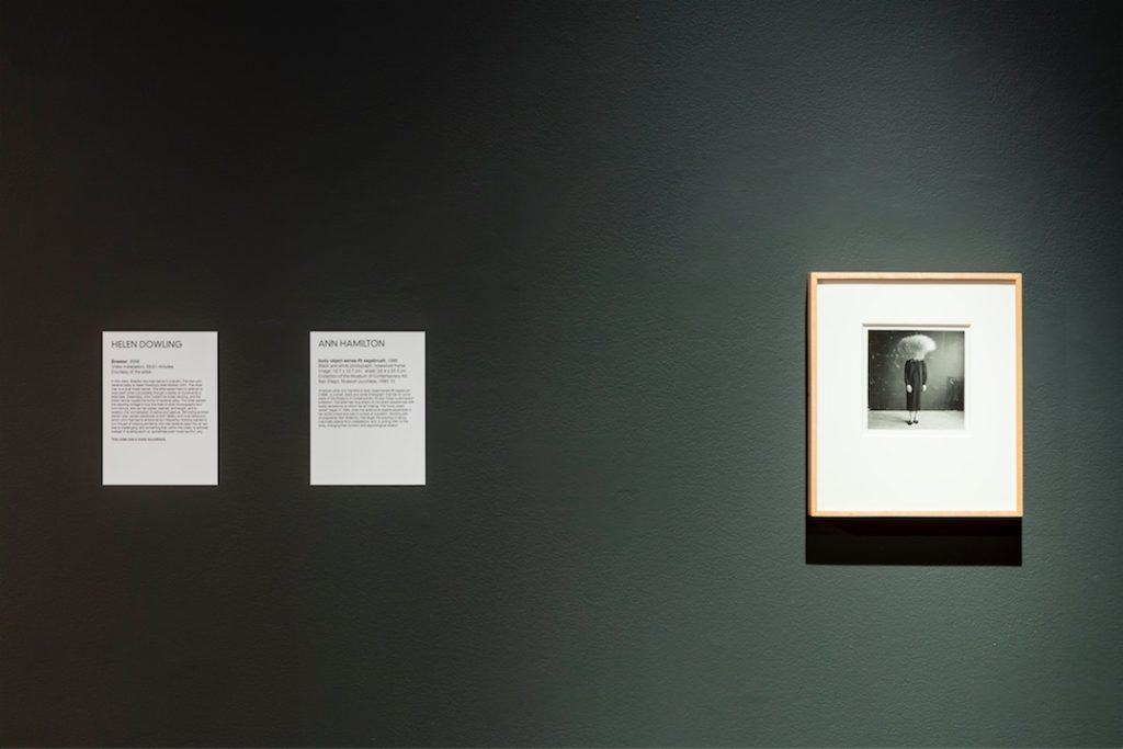 Ann Hamilton, body object series #5 sagebrush, 1986, Black and white photograph, rosewood frame, Image: 12.7 x 12.7 cm; sheet: 25.4 x 20.3 cm, Collection of the Museum of Contemporary Art San Diego