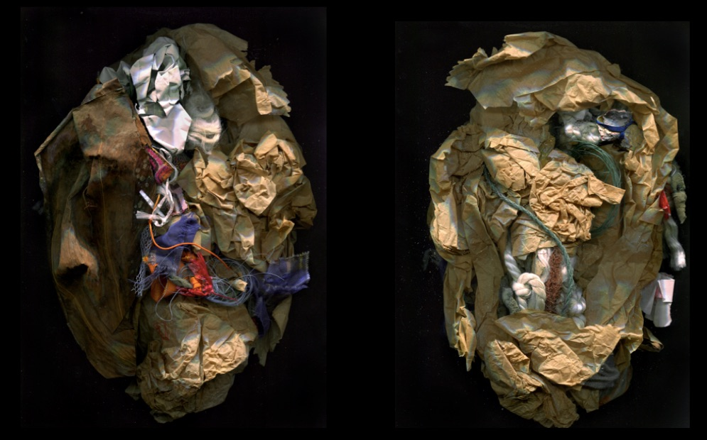 Raphaëlle de Groot, Study 5, A New Place - Head Remnants, 2015, Head shape scans (diptych) mixed media